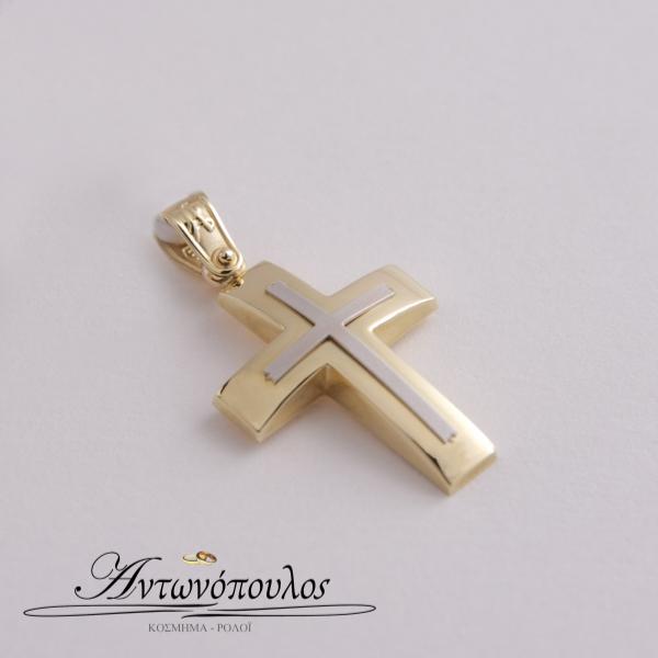 Χρυσός Σταυρός με Λευκόχρυσο κ14 mb5495