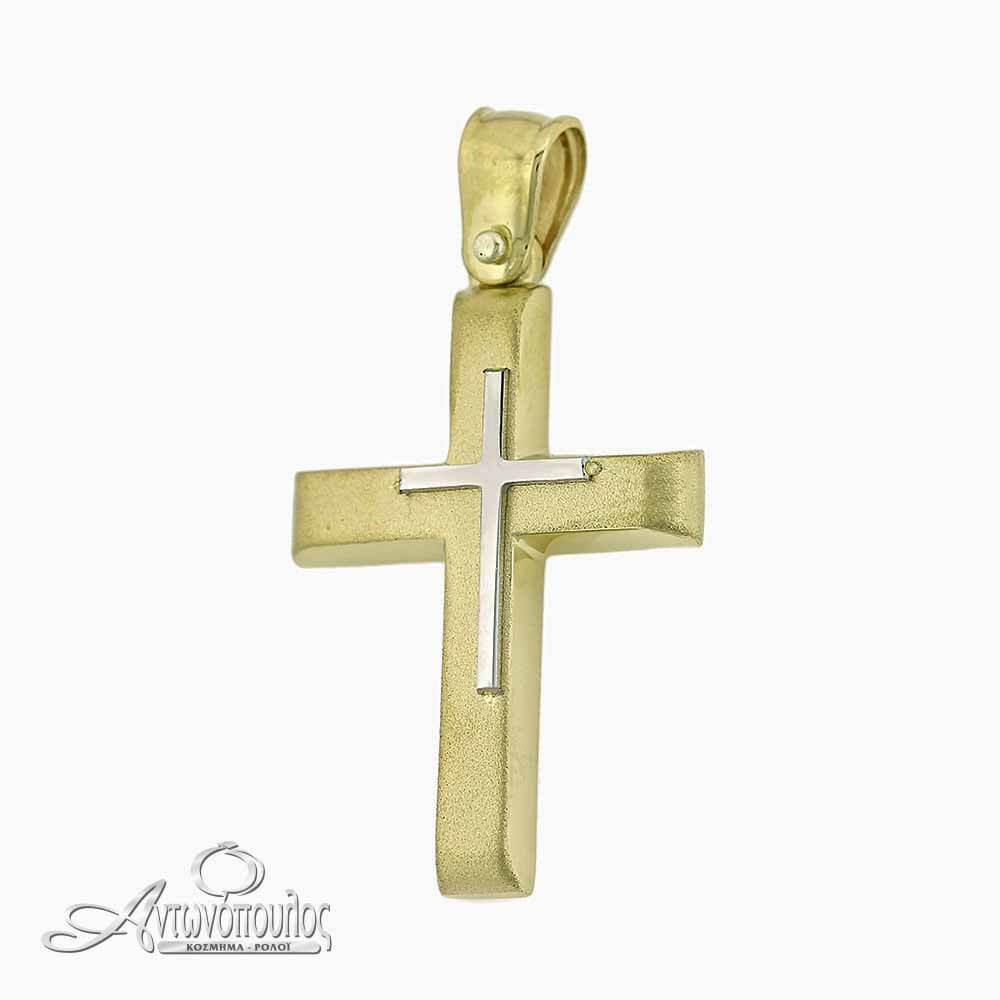 Χρυσός Σταυρός με Λευκόχρυσο 14 καράτια -argw207
